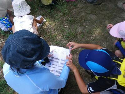 水質検査・自然観察